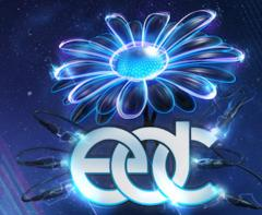 Katy Perry, Justin Bieber Documentary Directors Tackle the Electric Daisy Carnival